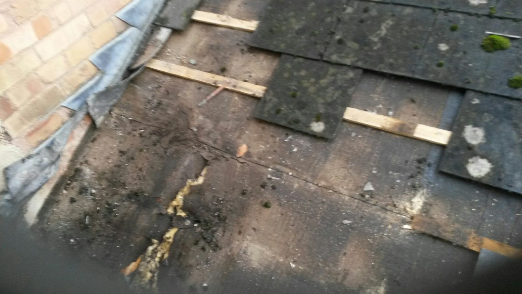 Roof Tiling And Roof Repairs Abacus Roofing